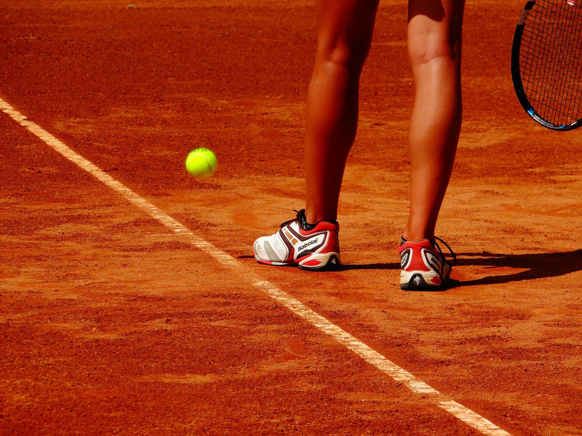 Što očekivati od Petre Martić na Roland Garrosu?
